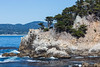 Cypress Cove - Point Lobos #5452