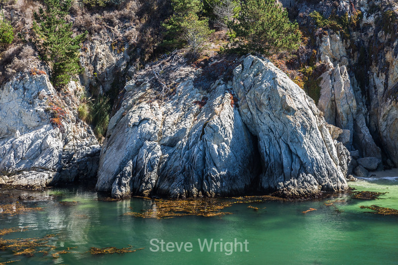 China Cove - Point Lobos #4861