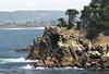 Point Lobos (164) D