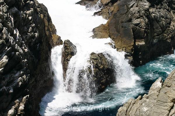 Point Lobos 5-1-2004