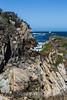 Canary Point - Point Lobos #1691