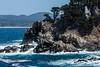 Canary Point - Point Lobos #1800