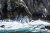 Canary Point - Point Lobos #1804