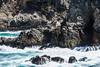 Canary Point - Point Lobos #1805