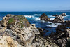 Canary Point - Point Lobos #1697