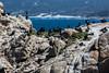 Cormorants - Point Lobos #1747