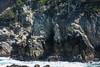 Canary Point - Point Lobos #1796