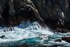 Canary Point - Point Lobos #1802