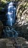 Basin Falls - Uvas Canyon Park #3805