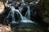 Granuja Falls - Uvas Canyon Park #3791