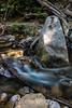 Swanson Creek - Uvas Canyon Park #4065