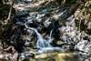 Granuja Falls - Uvas Canyon Park #4116