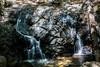 Little Falls - Uvas Canyon Park #4122
