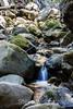 Swanson Creek - Uvas Canyon Park #4074