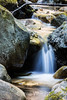 Swanson Creek - Uvas Canyon Park #4077