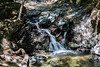 Granuja Falls - Uvas Canyon Park #4039