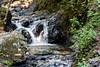 Granuja Falls - Uvas Canyon Park #3542