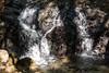 Little Falls - Uvas Canyon Park #3764