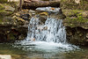 Swanson Creek - Uvas Canyon Park #3569