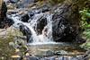 Granuja Falls - Uvas Canyon Park #3545