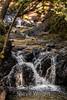 Granuja Falls - Uvas Canyon Park #3556