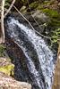 Swanson Creek - Uvas Canyon Park #3571