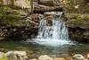 Swanson Creek - Uvas Canyon Park #3559