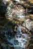 Black Rock Falls - Uvas Canyon Park #3621