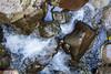 Swanson Creek - Uvas Canyon Park #3588-Edit