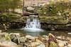 Swanson Creek - Uvas Canyon Park #3564
