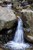 Swanson Creek - Uvas Canyon Park #3597