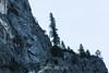 Sentinal Rock - Yosemite #1408