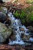 Stream - Yosemite #0037
