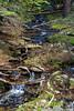 Stream - Yosemite #0043