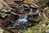 Stream - Yosemite #0025