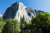 El Capitan - Yosemite #2026