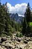 Sentinal Rock - Yosemite #1943