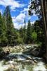 Merced River - Yosemite #1947