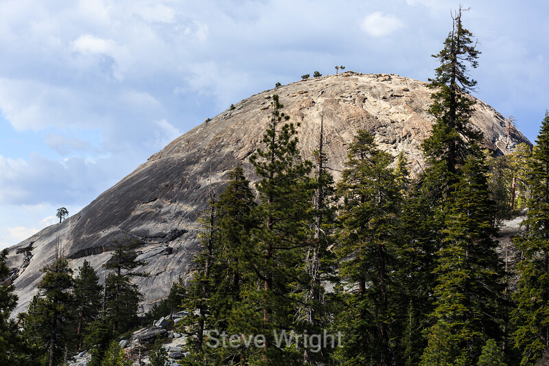 Sentinel Dome - Yosemite #0054