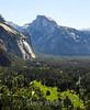 Half Dome - Yosemite #0700-2