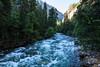 Merced River - Yosemite #0811