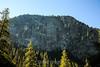 Maple leaves - Yosemite #0843