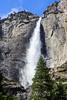 Upper Yosemite Falls - Yosemite #0579