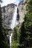 Yosemite Falls - Yosemite #0562