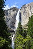 Yosemite Falls - Yosemite #0573