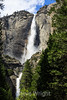 Yosemite Falls - Yosemite #0566