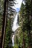 Yosemite Falls - Yosemite #0553