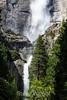 Yosemite Falls - Yosemite #0560