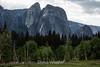 Cathedral Rocks - Yosemite #8736