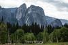 Cathedral Rocks - Yosemite #8734
